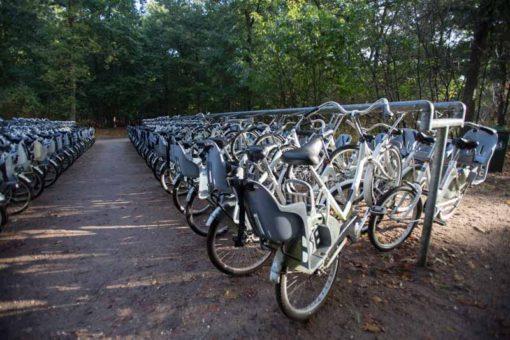 bicycles at Hoge Veluwe National Park ©Erika's Way Photography