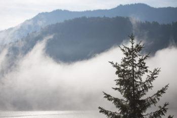 sunshine and mist over Achen Lake, Austria ©Erika's Way Photography