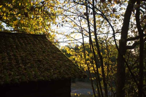 Sun setting light at Camping Le Roptai, Belgium