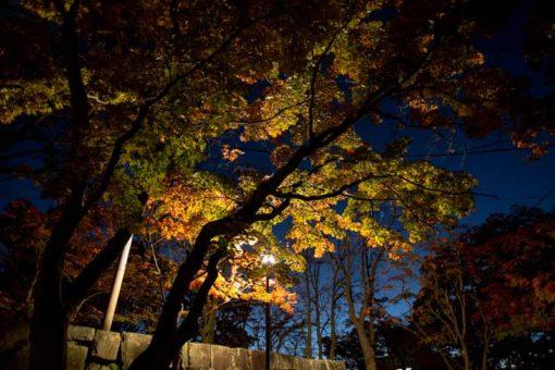 Autumn night around the castle ruins in Morioka