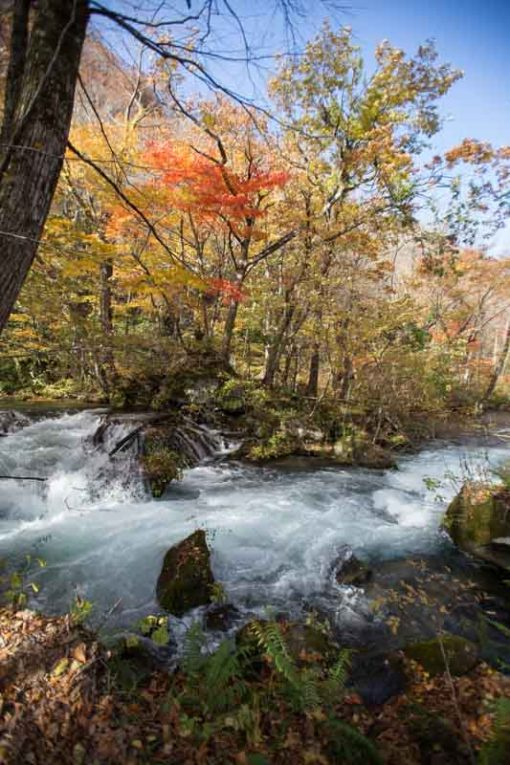 Oirase stream, lake Towada copyright Erika's Way Photography