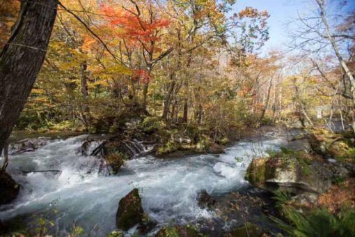 River along Oirase stream