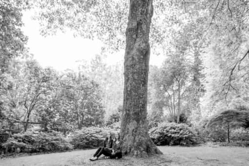 two sisters and a big tree in George Tindale Garden ©Erika's Way Photography