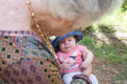 Nan and great granddaughter at Grants Picnic Ground, Sherbrook Forest, Kallista, Vic