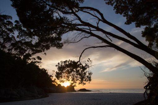 Sunrise over Little Waterloo Bay