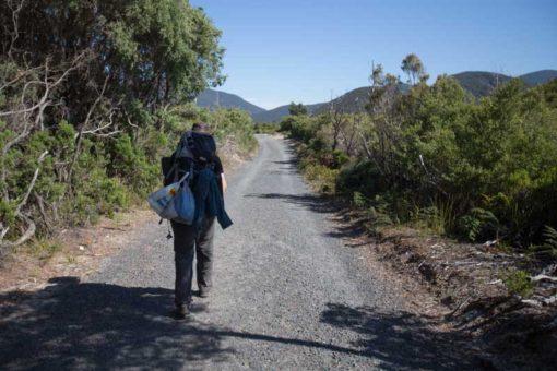 Hiking towards Telegraph Saddle Car Park