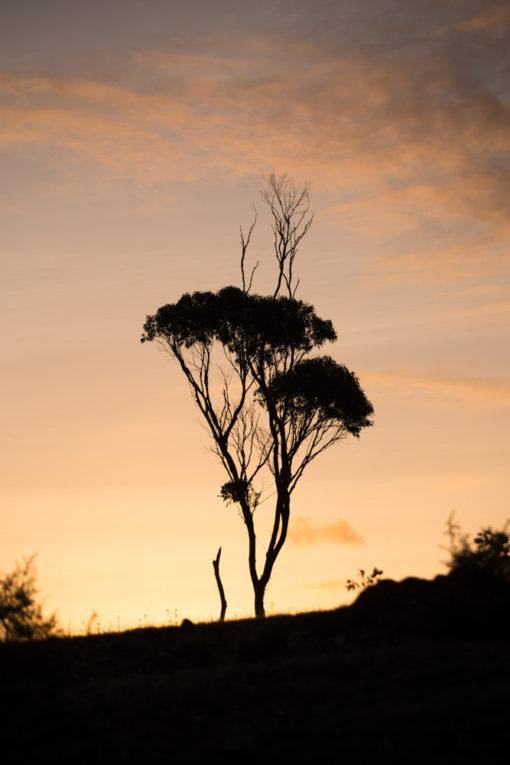 Sunset ights over Maria Island ©Erika's Way Photography