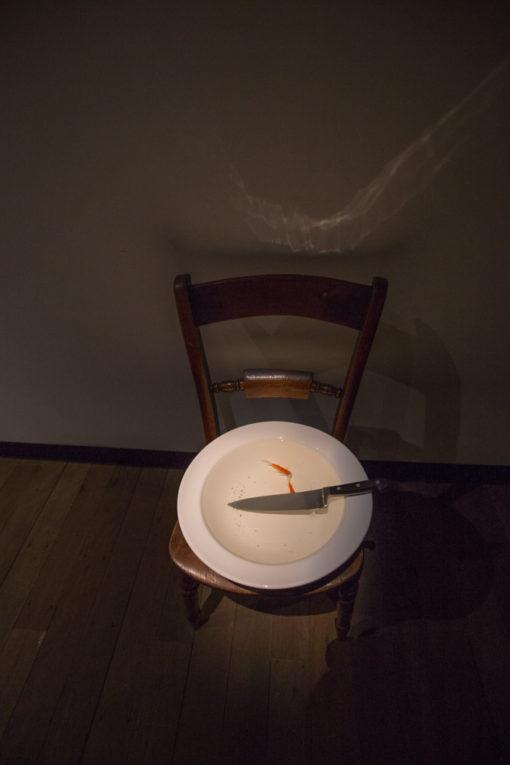 fish bowl at MONA Museum, photo by Erika's Way Photography