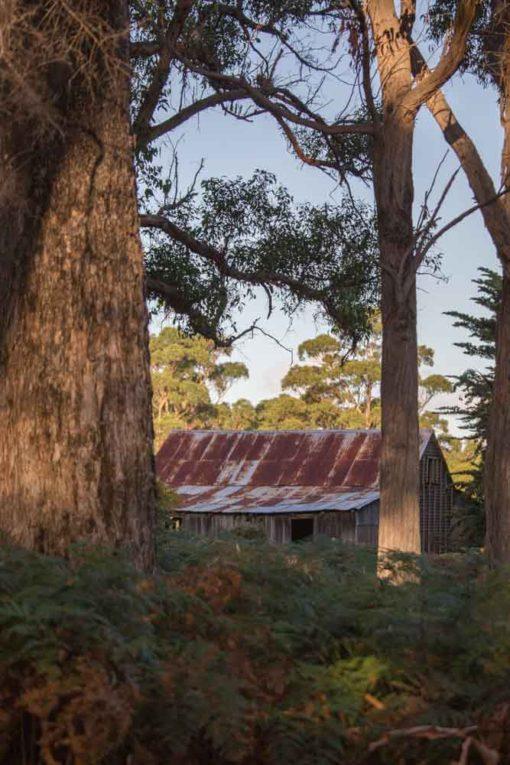French's Farm, Maria Island, Tasmania ©Erika's Way Photography