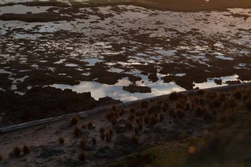 Sunset reflecting in the water at Point Nepean