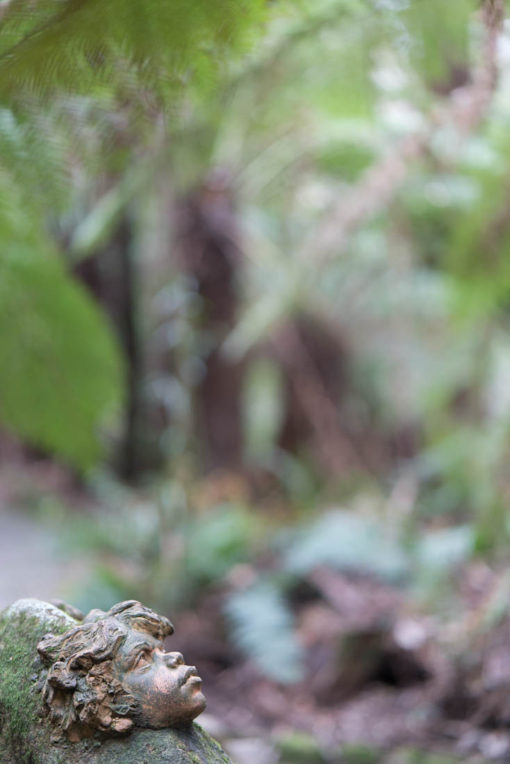 Amazing places to visit in Melbourne: Olinda, Ricketts Sanctuary