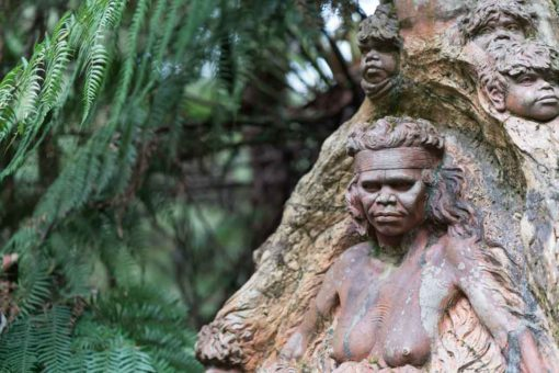 Mother Nature: Ricketts Sanctuary, Olinda, Melbourne
