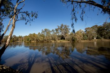 The Murray river between Albury and Wodonga