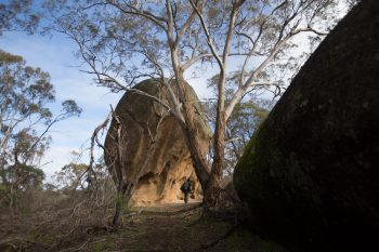 Hiking through the boulders in Melville Caves