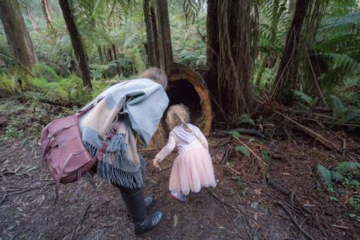 Exploring the Dandenongs nature and wildlife with a young family ©Erika's Way Photography