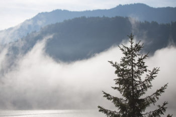 sunshine and mist over Achen Lake, Austria ©Erika's Way Photography