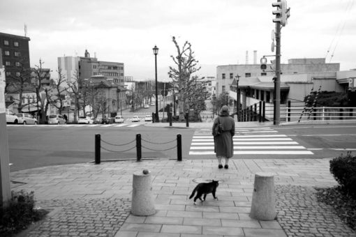 Japanese lady and Japanese cat at a crossing in Hakodate, Hokkaido, Japan
