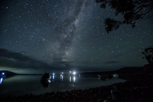Starry night with squid boats lights in the Horizon. Photo taken at 4.00am from Encampment Cove, walk in campsite of Maria Island ©Erika's Way Photography