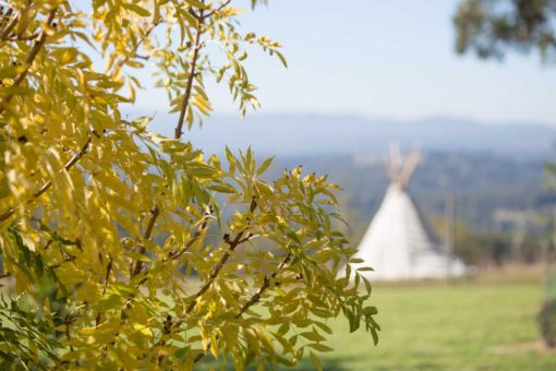 Autumn colours and a teepee tent