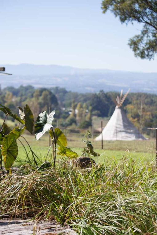 teepee tent and the Yarra Valley